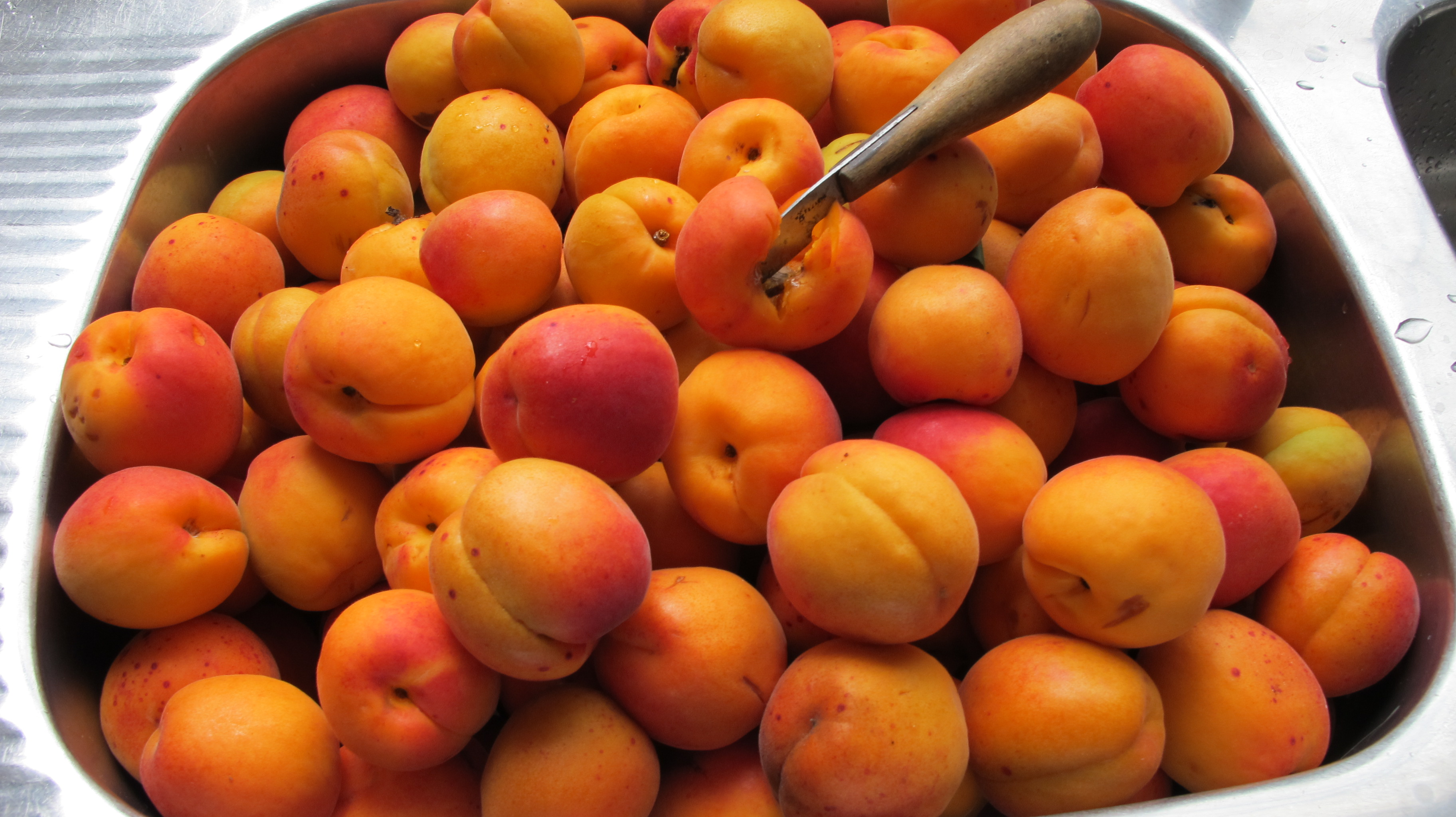 Apricots and Raspberries